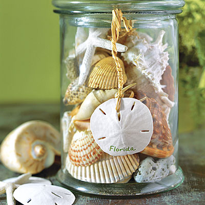 Seashell container diy how to use seashell souvenirs to for Best way to sand glass bottles