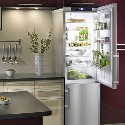 Ideas for a small kitchen liebherr refrigerator freezer for Small room fridge