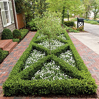 Front yard boxwood parterre landscaping with boxwoods for Southern living landscape design