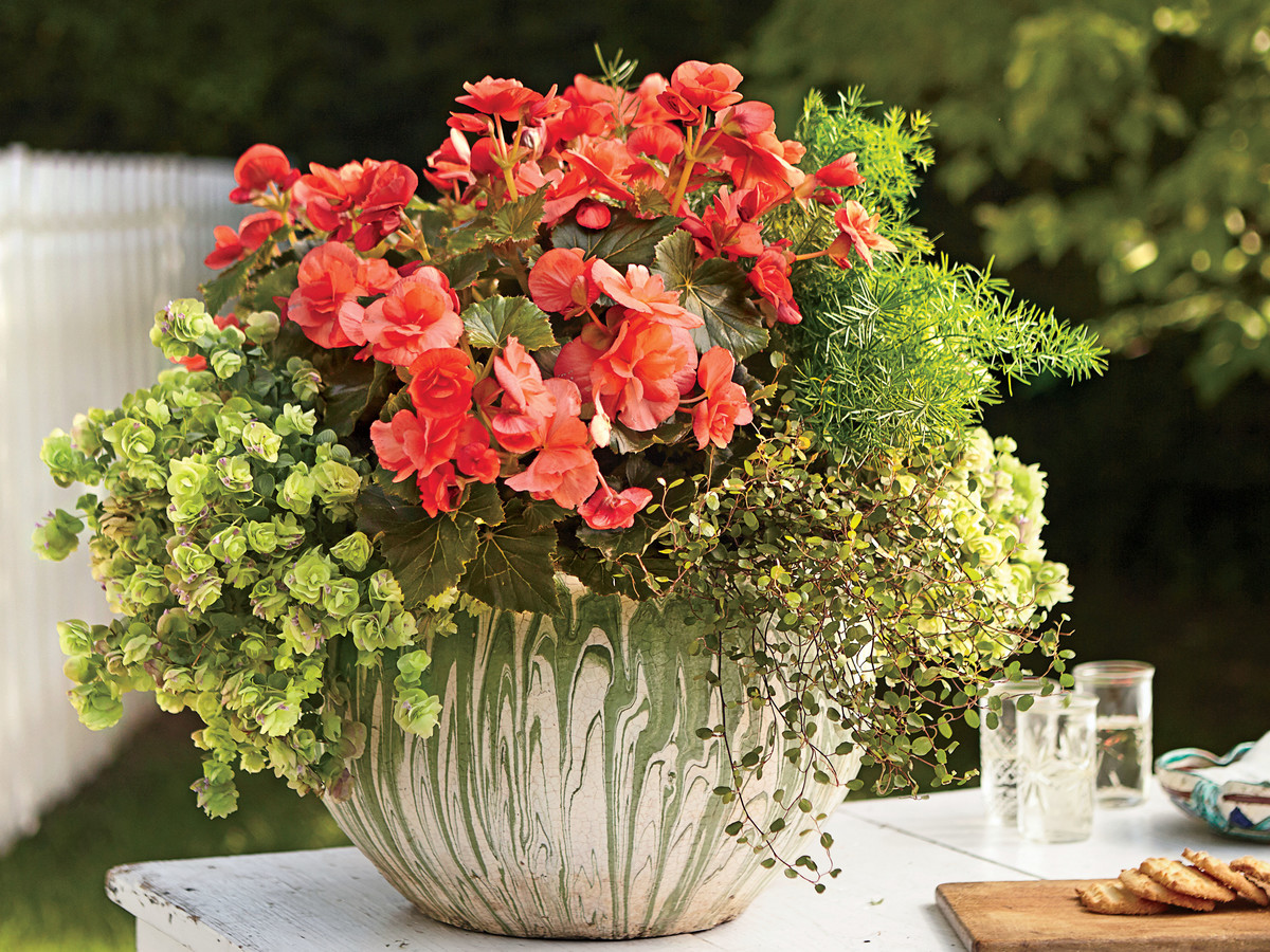 Show Off Begonias with Handmade Pottery
