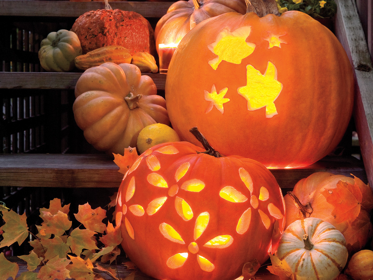 Easy printable pumpkin carving patterns southern living