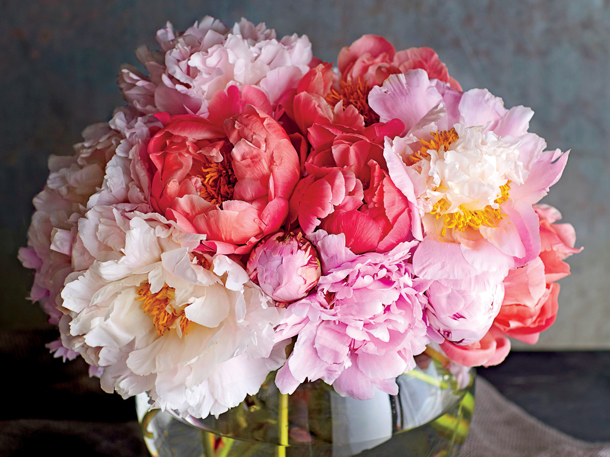 This Is the Best Vase for Displaying Peonies