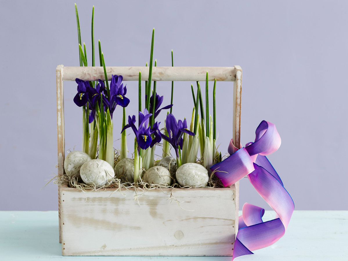 Iris Flower Basket Arrangement