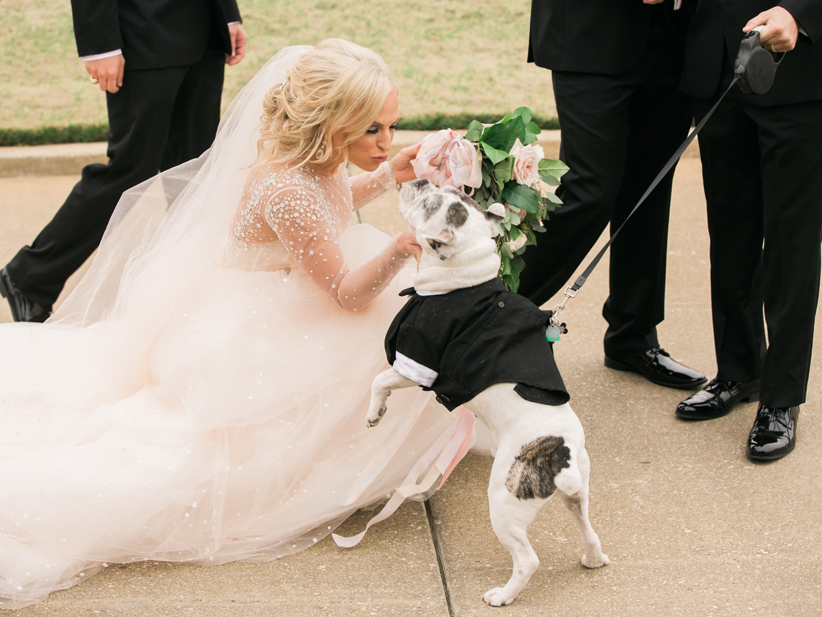 The Do\'s and Don\'ts for Including Your Dog in Your Wedding ...