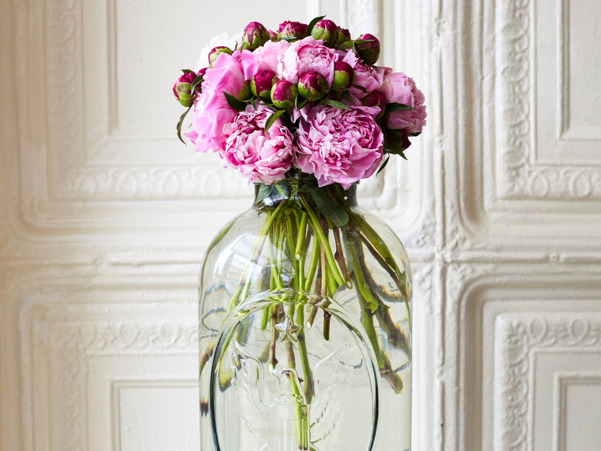 Peonies in a Glass Jar