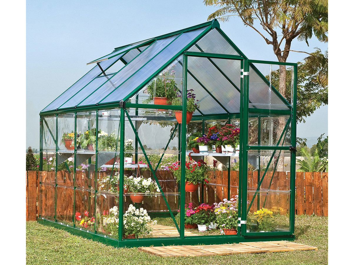 It's Official: Mini-Greenhouses Are Sweeping Backyards