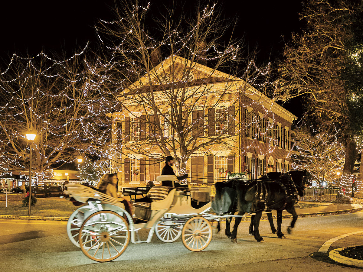 Image result for christmas carriage ride in dahlonega