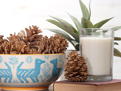 How To Bleach Pinecones