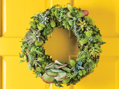 Succulent Wreath How To