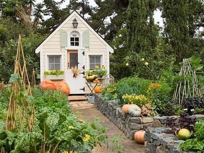 Tiny Dutch Door Garden Shed