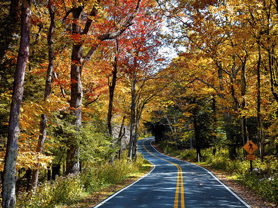 Skyline Drive through the foliage at Shenandoah National Park, VA