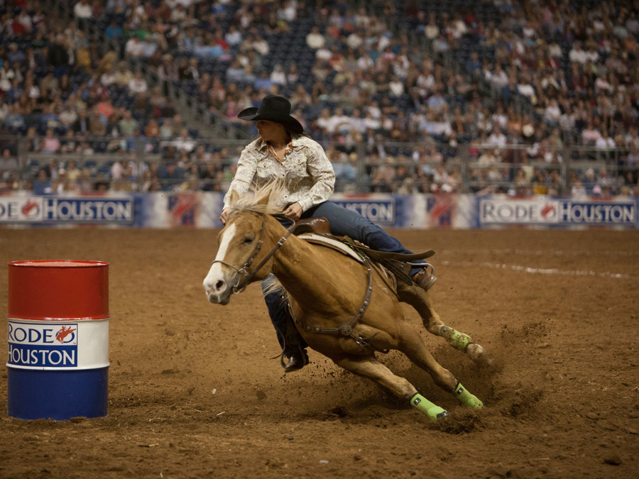 Top 10 Things To Do at the Houston Rodeo