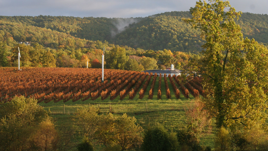 Barboursville Vineyards (Barboursville, Virginia)