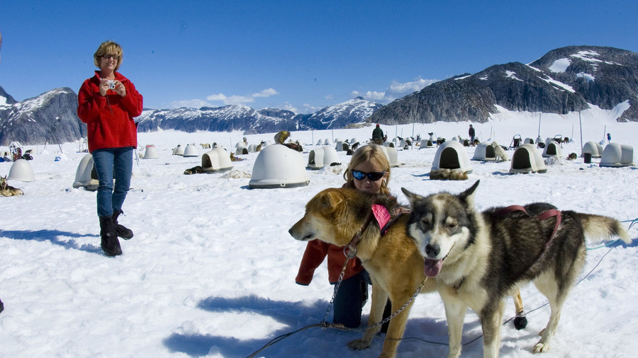Glacier Dog Mushing
