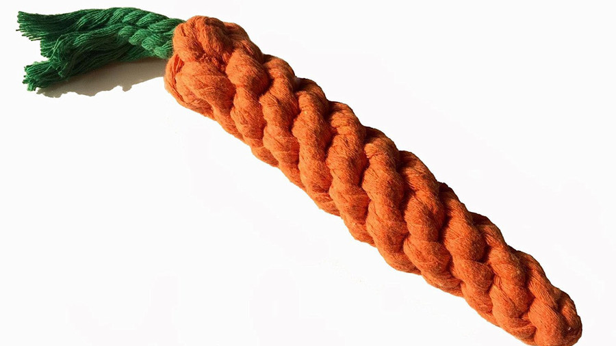 Rope Carrot Dog Toy