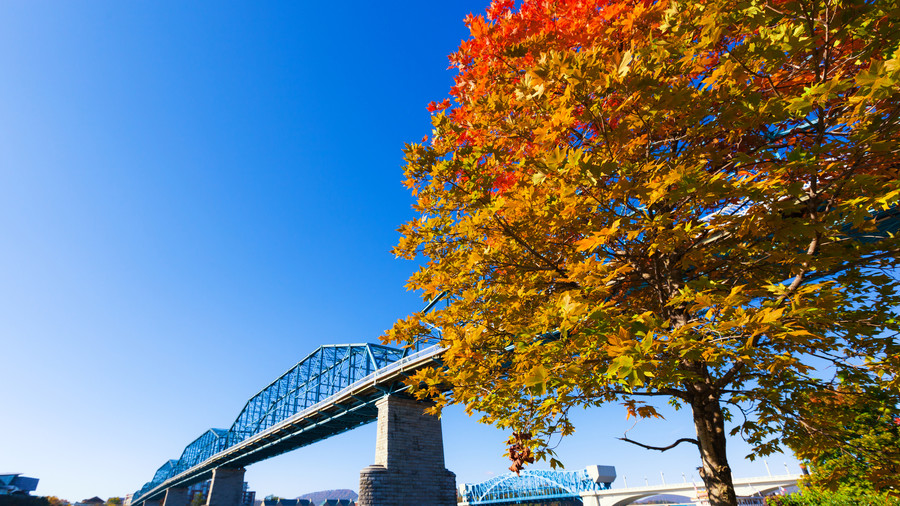 chattanooga-tennessee-fall-foliage