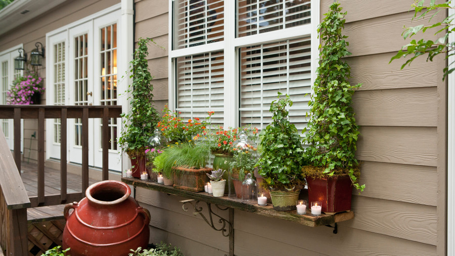 Add a feature shelf just below the window until shrubs grow in.