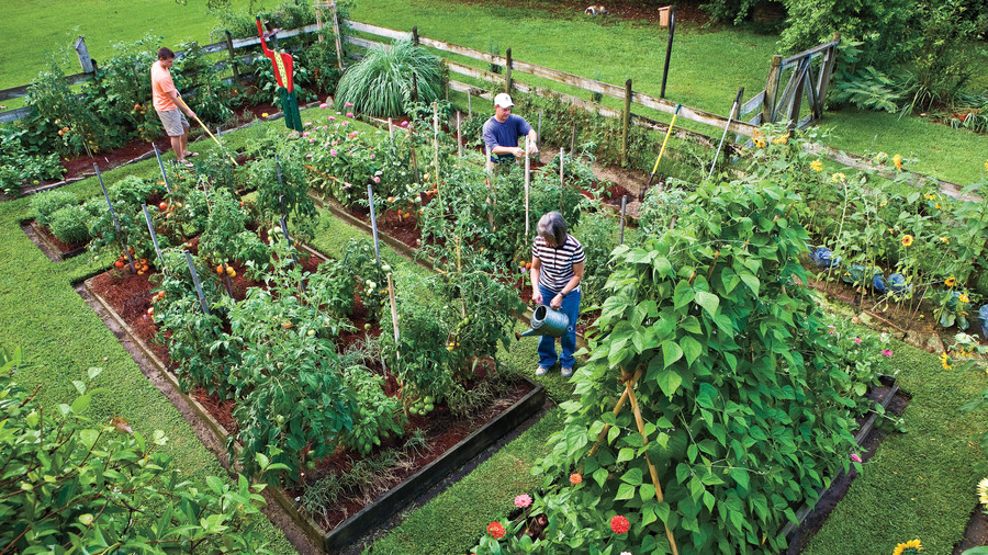 10 Ways To Style Your Very Own Vegetable Garden: 10 Best Landscaping Ideas