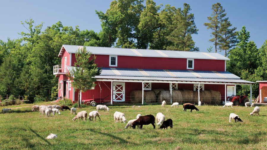 Fickle Creek Farm