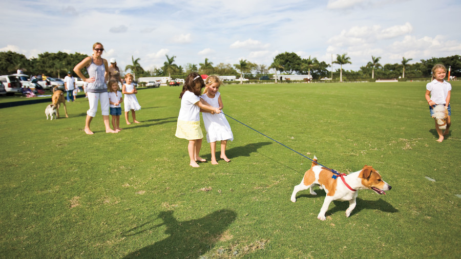 picture of spectators at international palm beach polo club match
