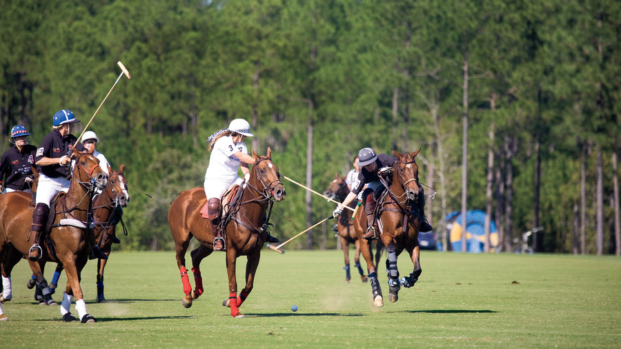 Polo at Whitney Field