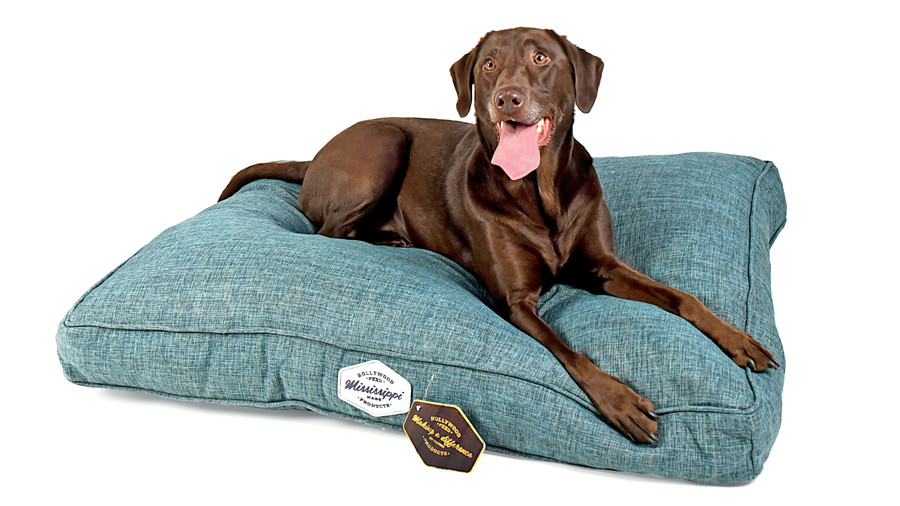 Casual Dog Bed