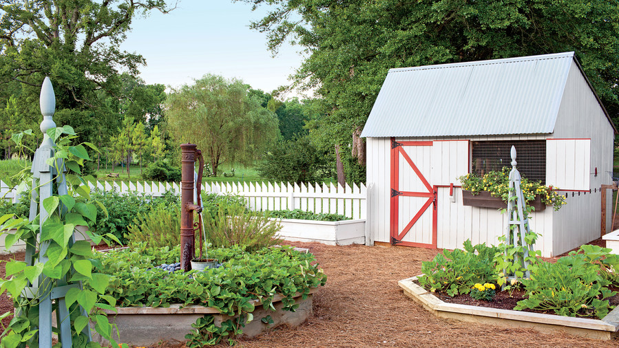 Red And White Backyard Chicken Coop