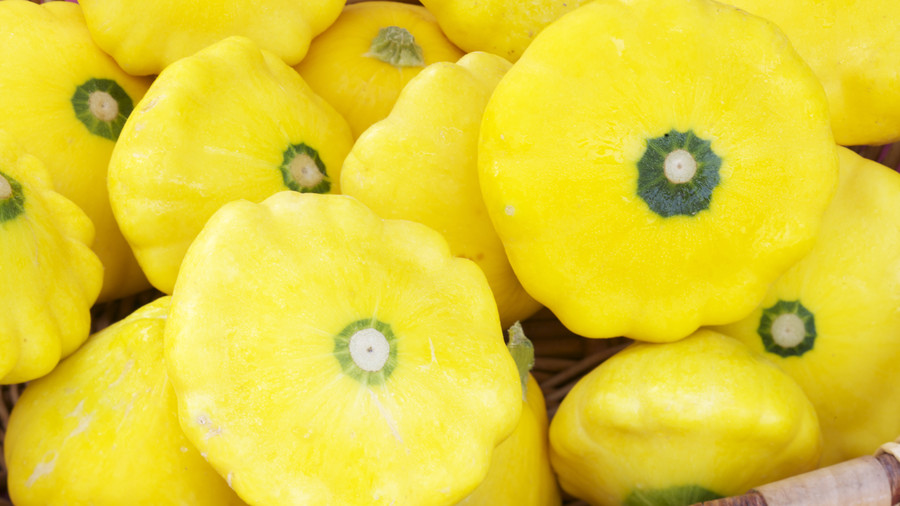 Basket of Yellow Summer Squash