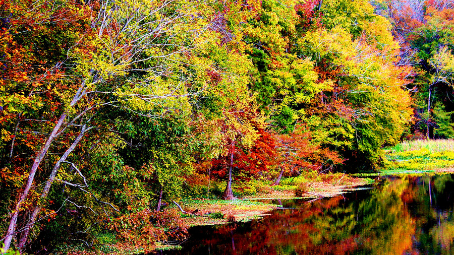 River Bend on the Natchez Trace Parkway Fall Color