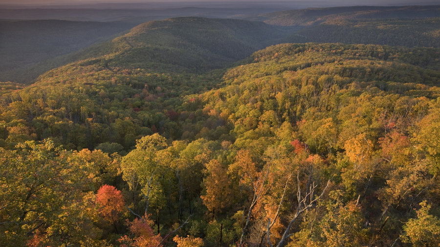 Best camping spots this fall southern living for Ozark national forest cabins