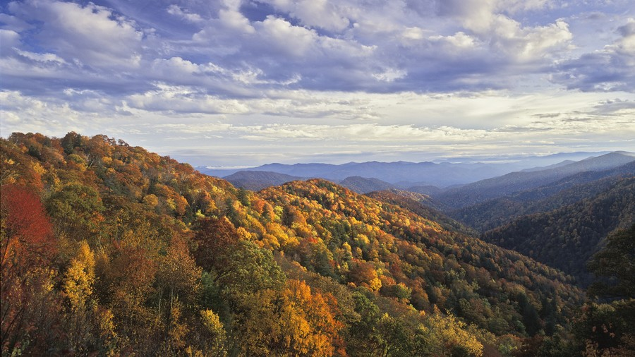 Great Smoky Mountains National Park Fall Color