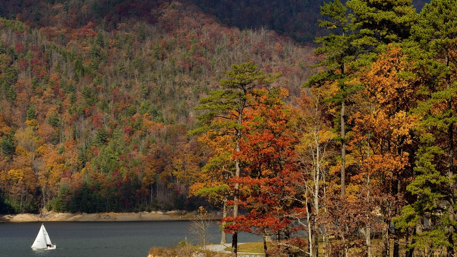 Watauga Lake Fall Color