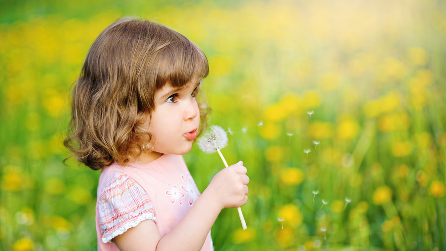 Cute little girl blowing dandelion