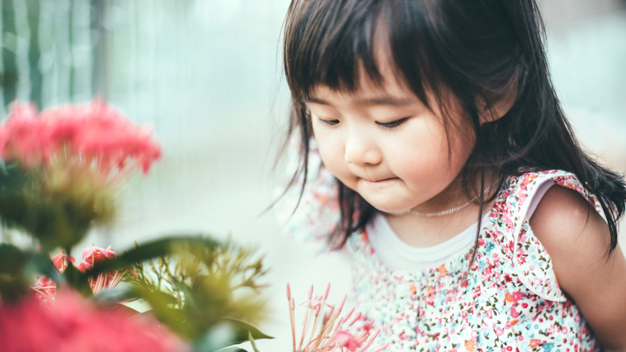 Toddler girl smelling a red flower