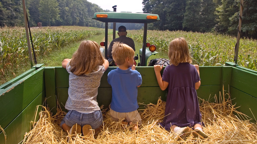 Hayrides and Harvests