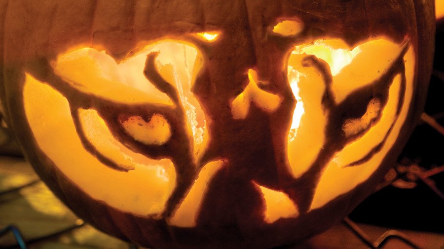 Tiger Eyes Pumpkin