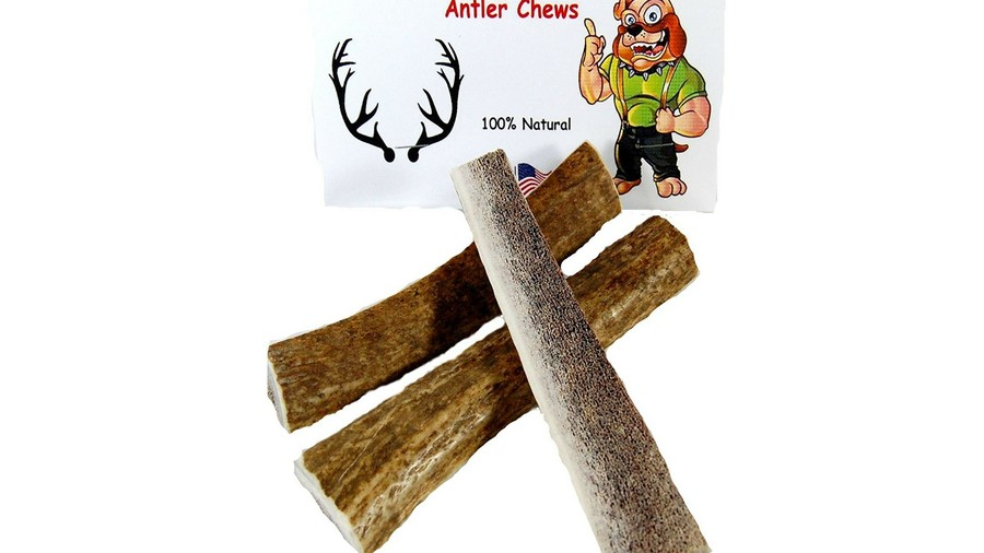 Gift Guide Pets Antler Chews