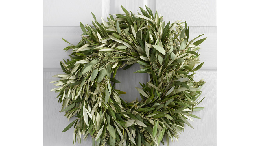 Live Olive and Eucalyptus Wreath