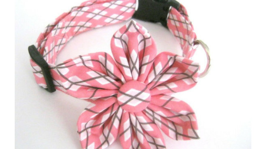 Gift Guide Pets Pretty Puppy Collar