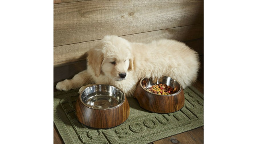 Water Bowl Placemat