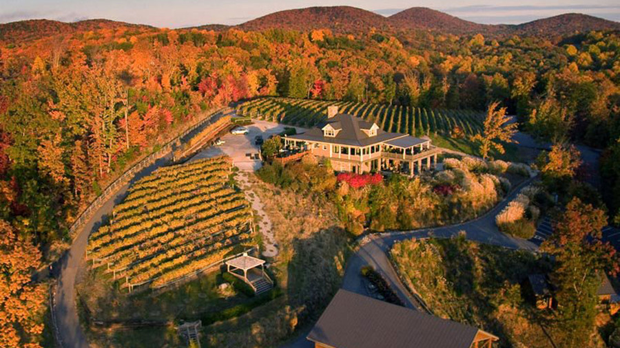 Sip the Trail: Georgia's Wine Country