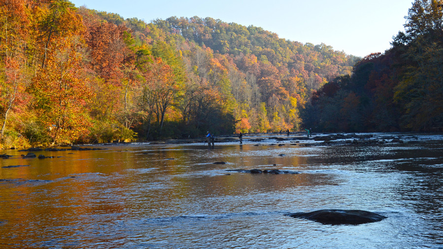 Go for the Trout: Western North Carolina Fly-Fishing Trail