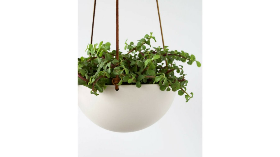 Hanging Ceramic Porcelain Planter