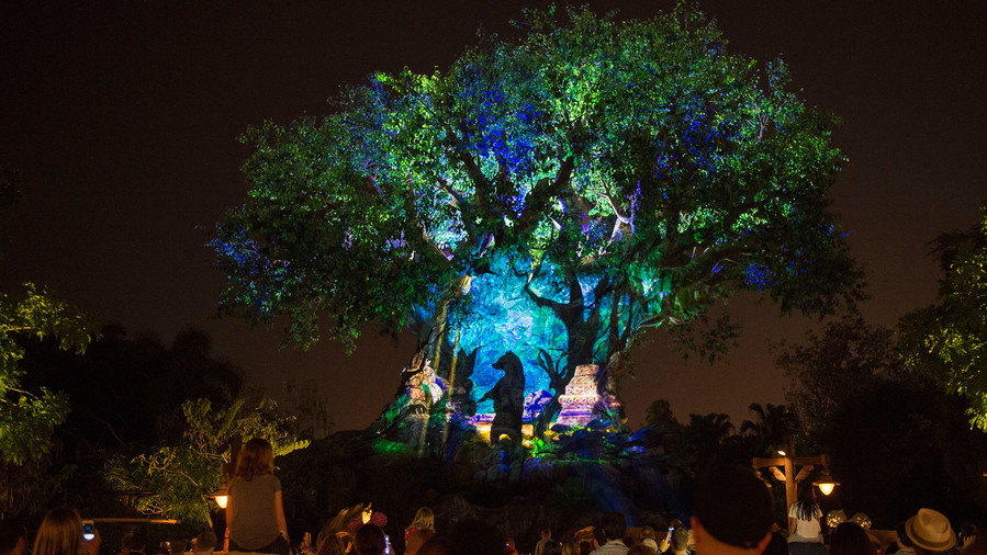 Take a Nighttime Stroll Through Animal Kingdom