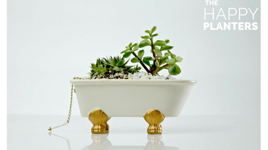 Pots for Indoor Plants vintage bathtub
