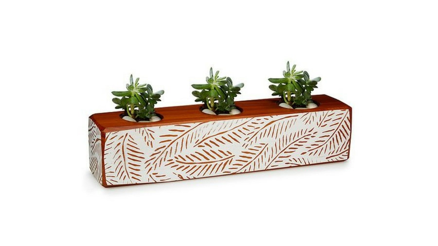 Pots for Indoor Plants wooden succulent