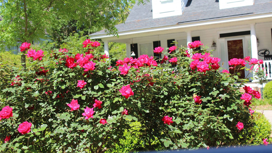 RX_1706_Best Small Towns for Retirement_Summerville, South Carolina