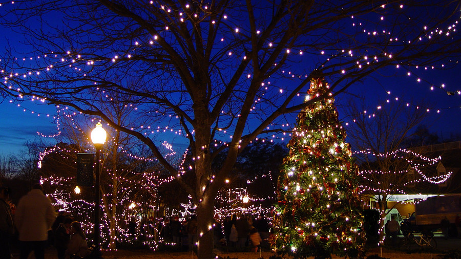 andalusia alabama - Best Christmas Tree Lights