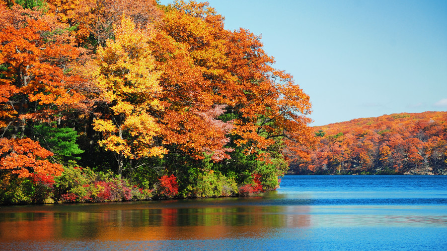 The 15 Best Train Rides for Spotting Fall Foliage in the South