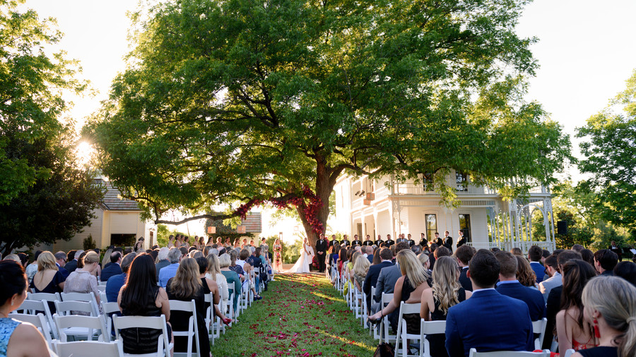 Married Beneath a Majestic Oak